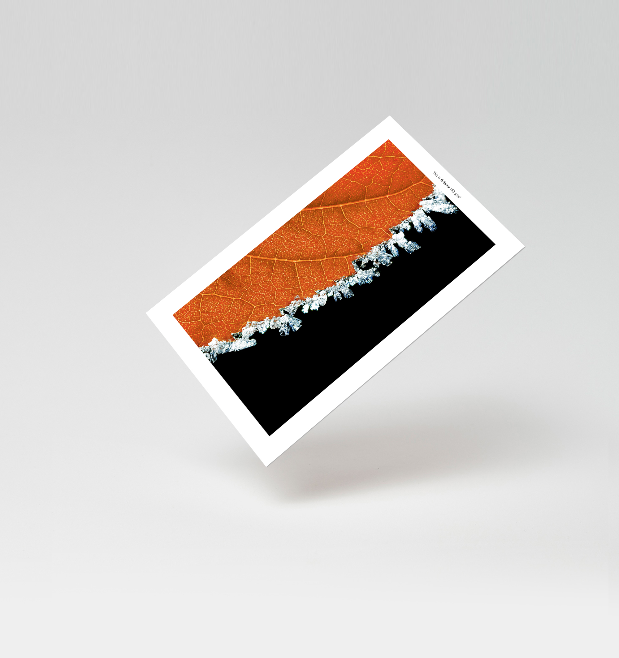 Icke gamla Arctic Paper lanserar ett ultravitt papper | PAPPERochMASSA.se RO-21